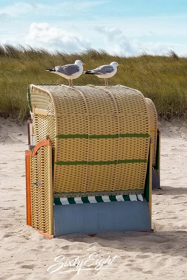 Strandkorb mit Besuchern