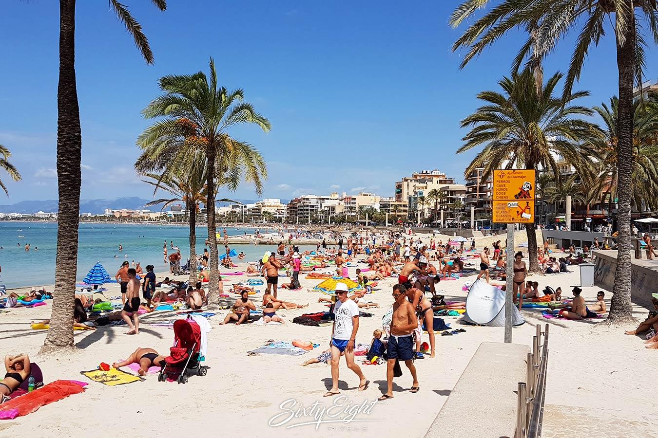 Fototour Viva Mallorca