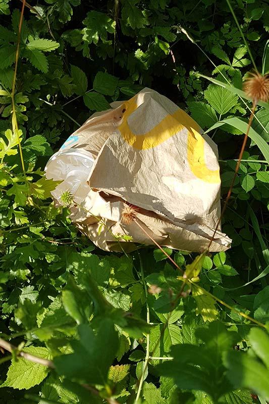Müll sammeln beim Fotografieren